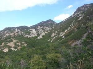 Ferguson Canyon